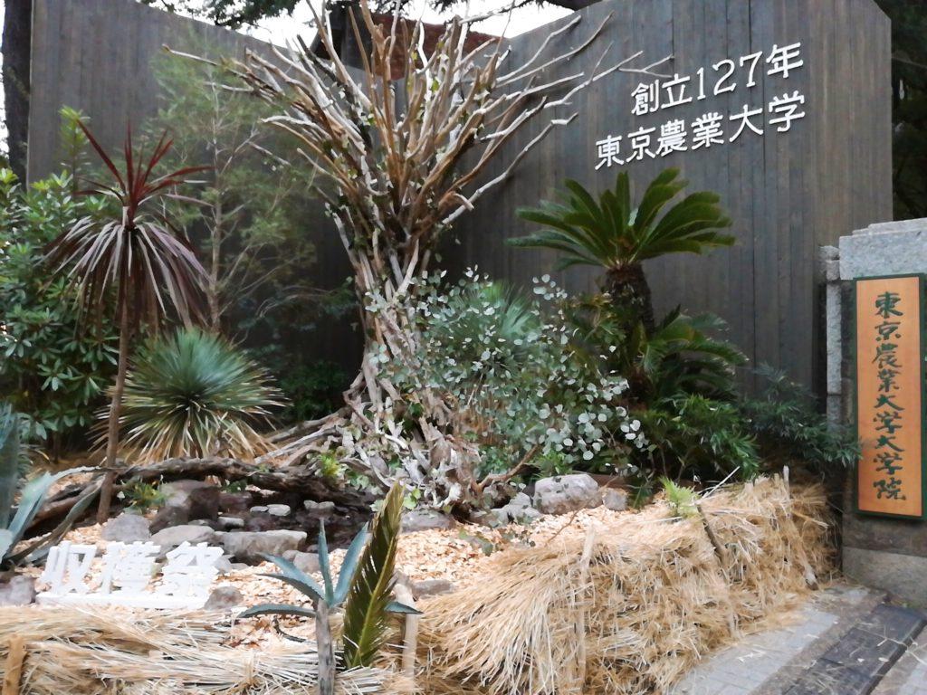 東京農業大学収穫祭の正門にあるオブジェ