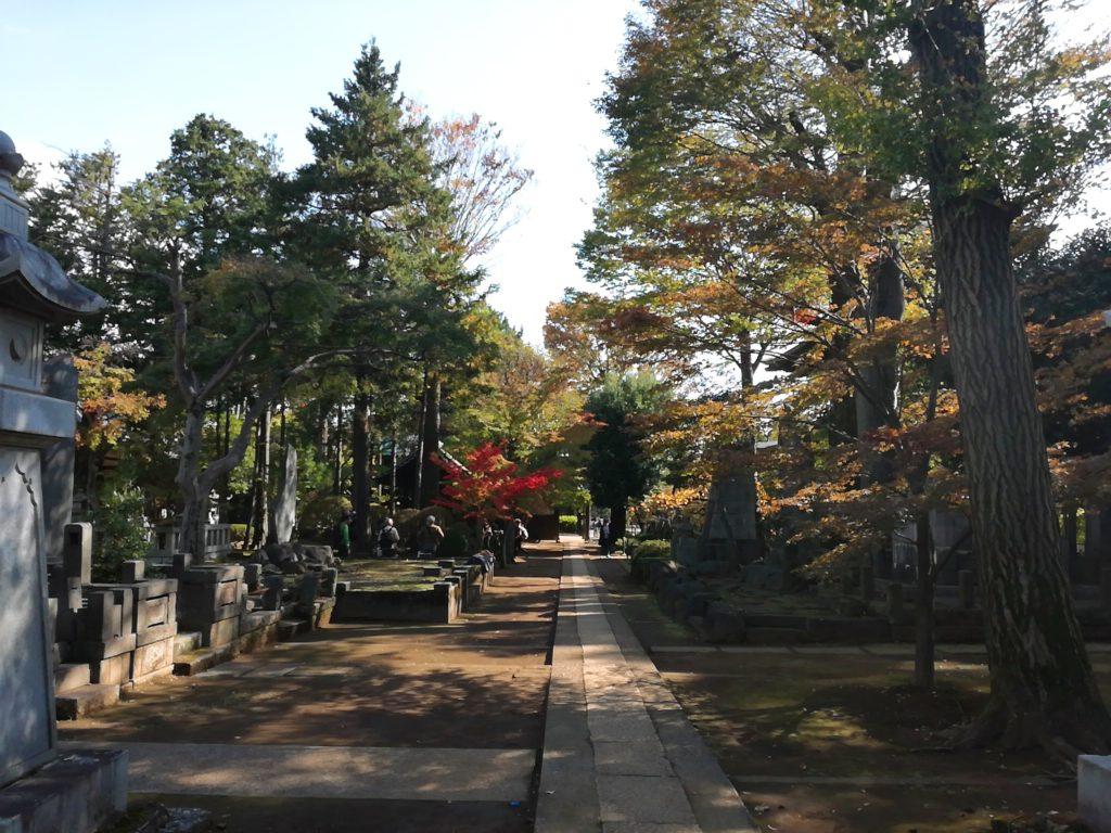 豪徳寺の見どころ⑤井伊直弼などの墓