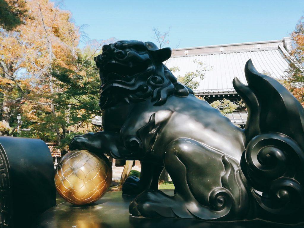 豪徳寺の見どころ④狛犬