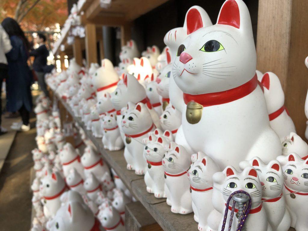 豪徳寺(豪徳寺・山下)の招き猫
