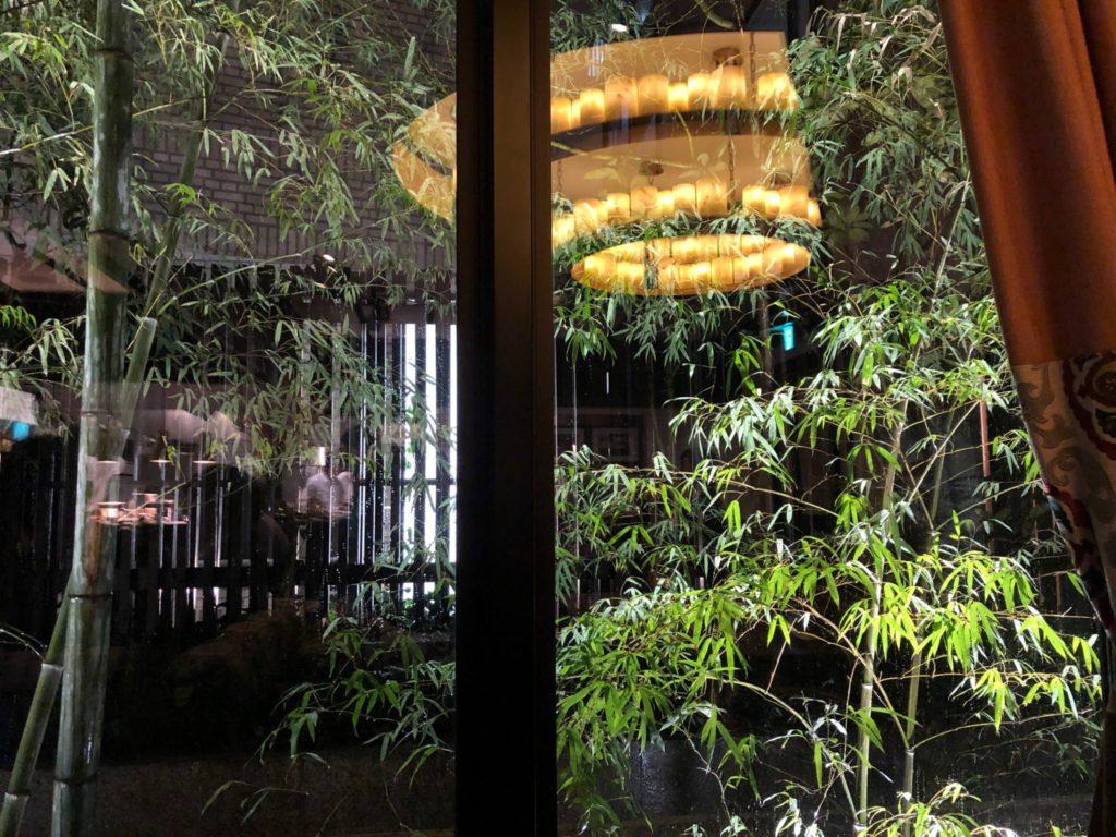 クラシカ表参道の竹林