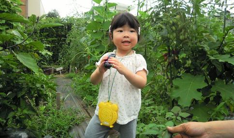 二子玉川体験農場の収穫の様子