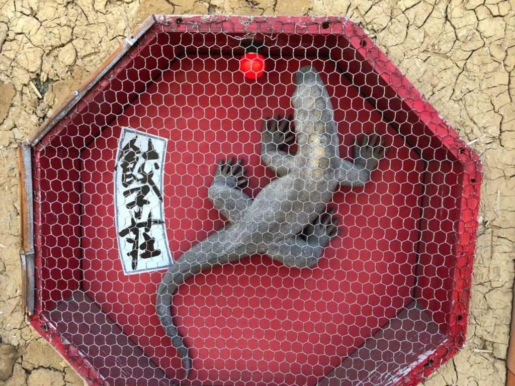 紅蜥蜴(べにとかげ)のマスコット