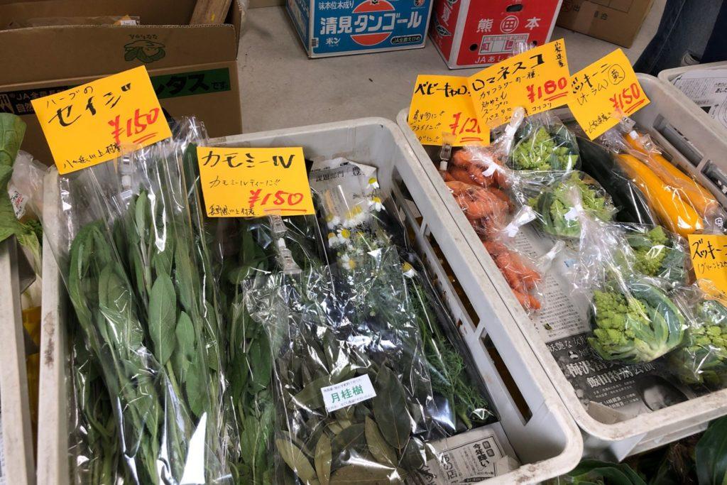 八ヶ岳元気村の新鮮な高原野菜