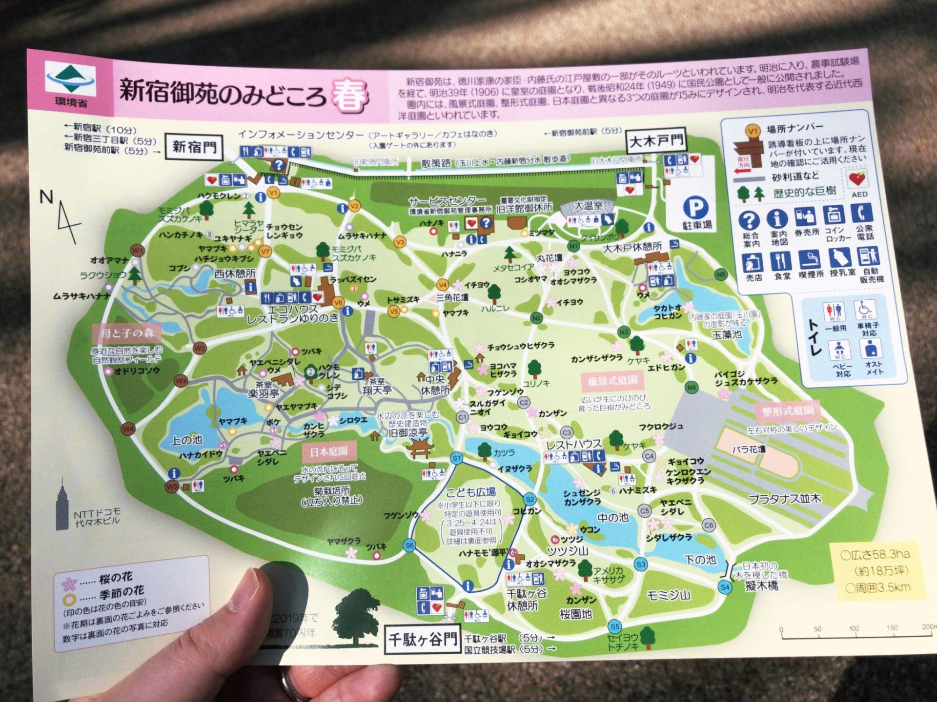 【新宿御苑】お花見の園内マップ