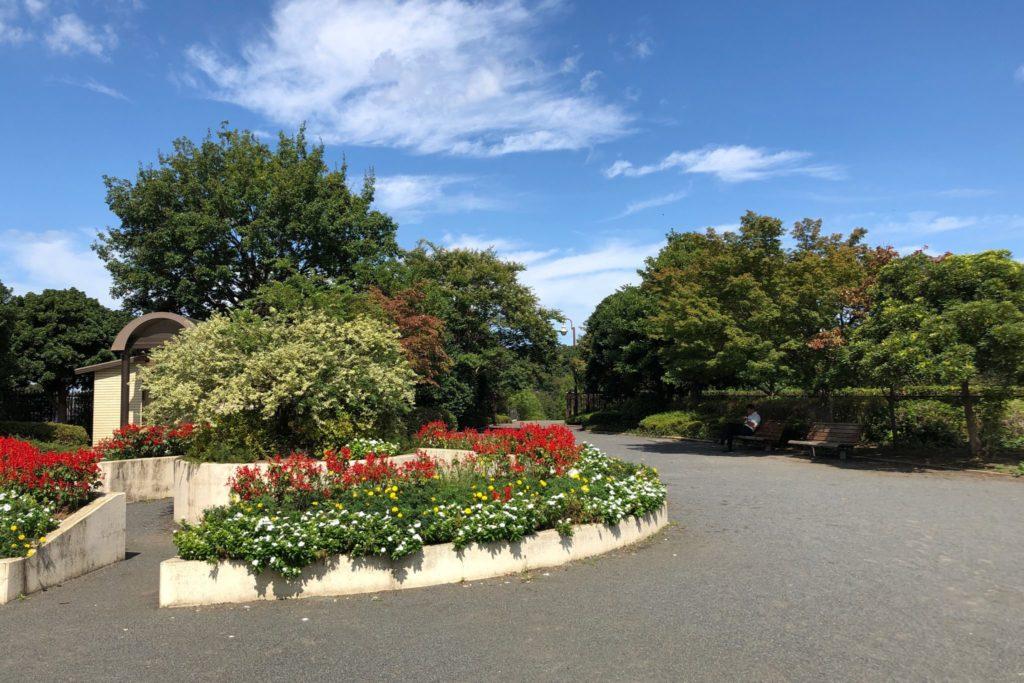 世田谷区立きたみふれあい広場の花壇