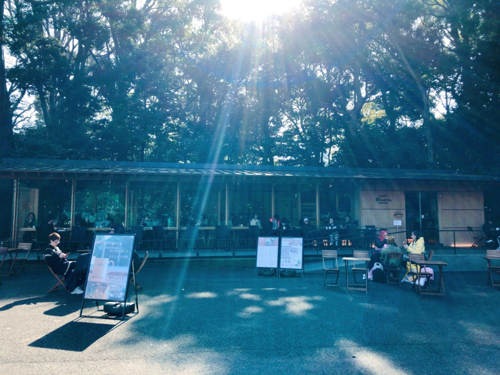 明治神宮の杜のカフェ