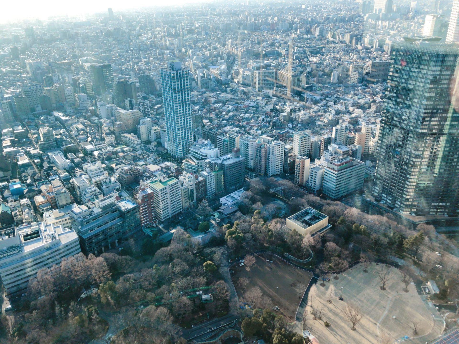 都庁 北展望台から見る新宿中央公園