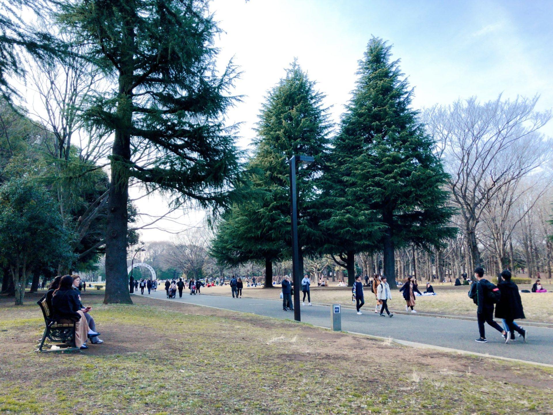 代々木公園のベンチで休憩