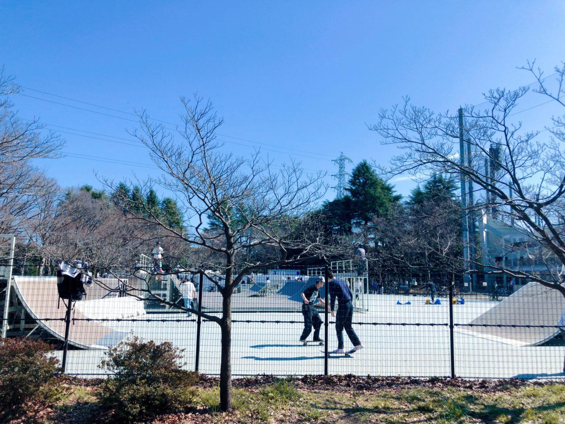 駒沢公園内のスケートパーク