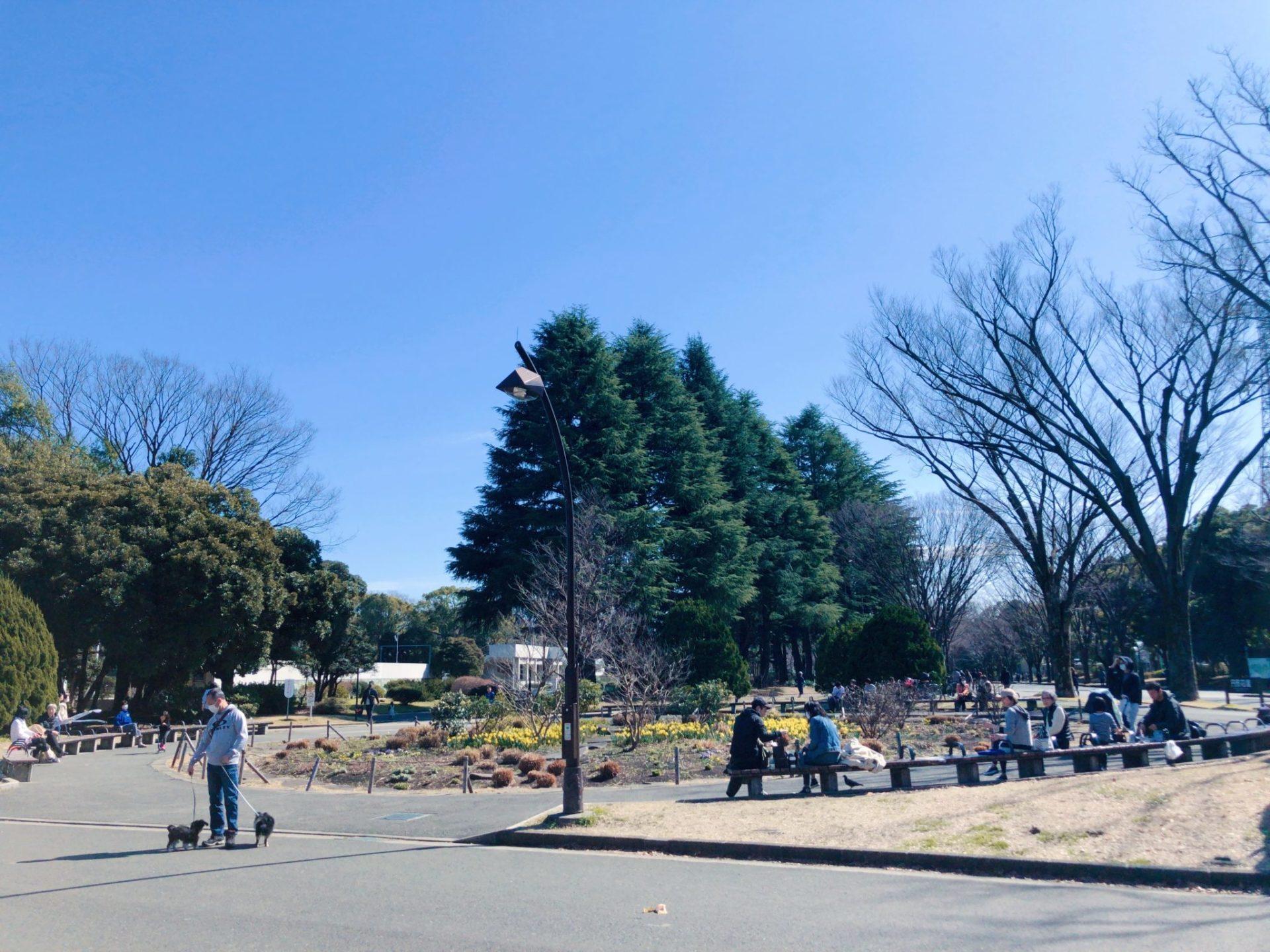 駒沢公園内にある花壇