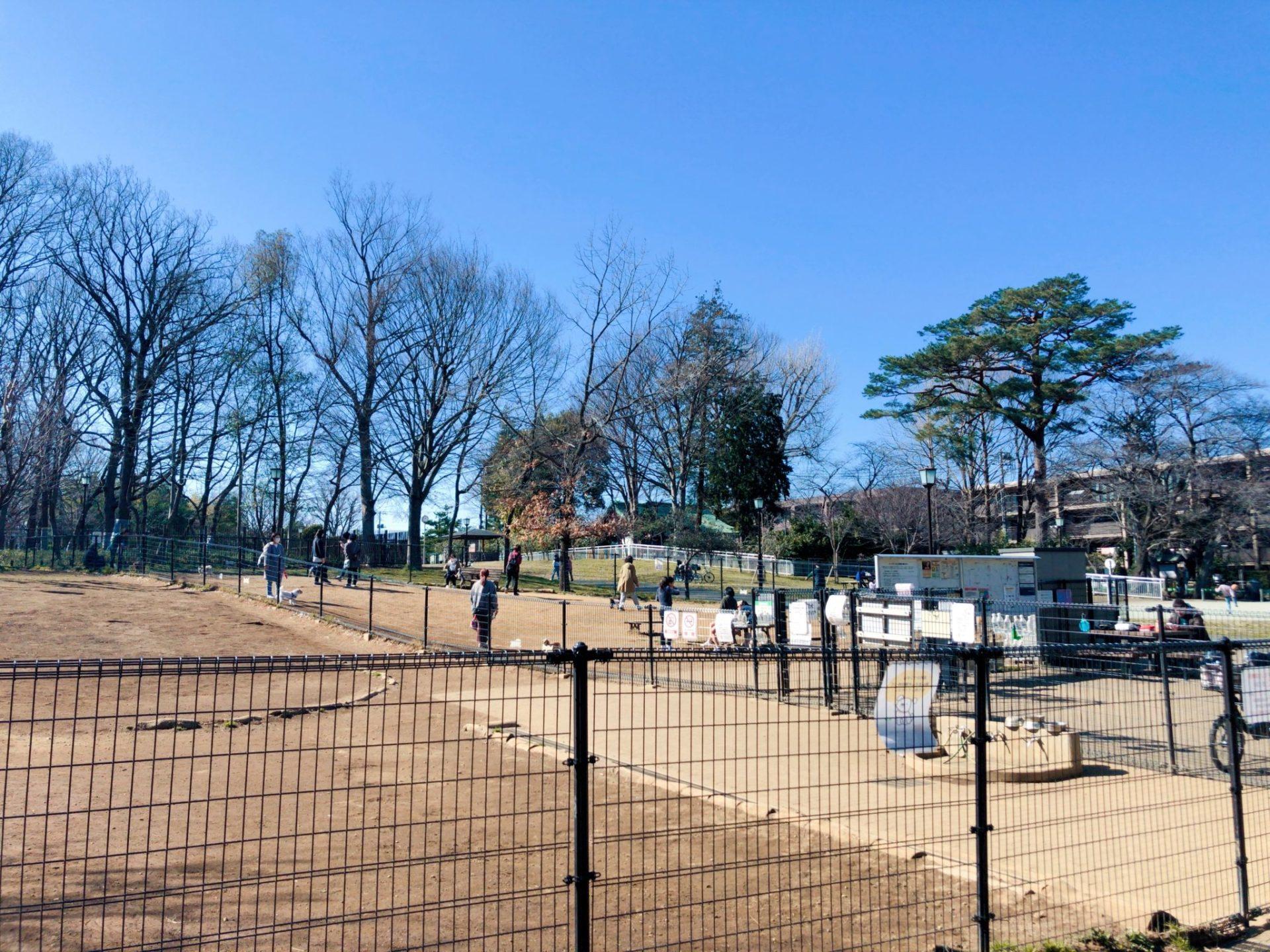 芦花公園(蘆花恒春園)のドッグラン