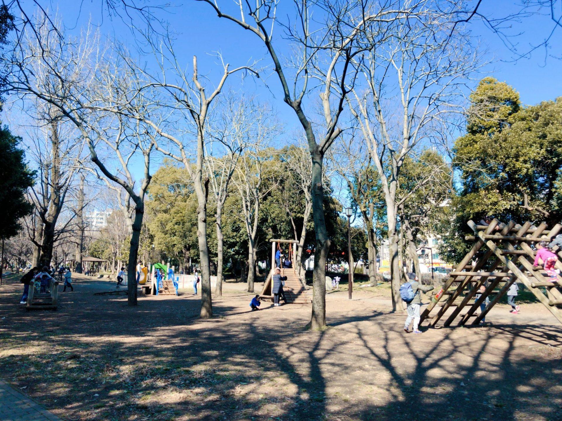 芦花公園(蘆花恒春園)のアスレチック広場