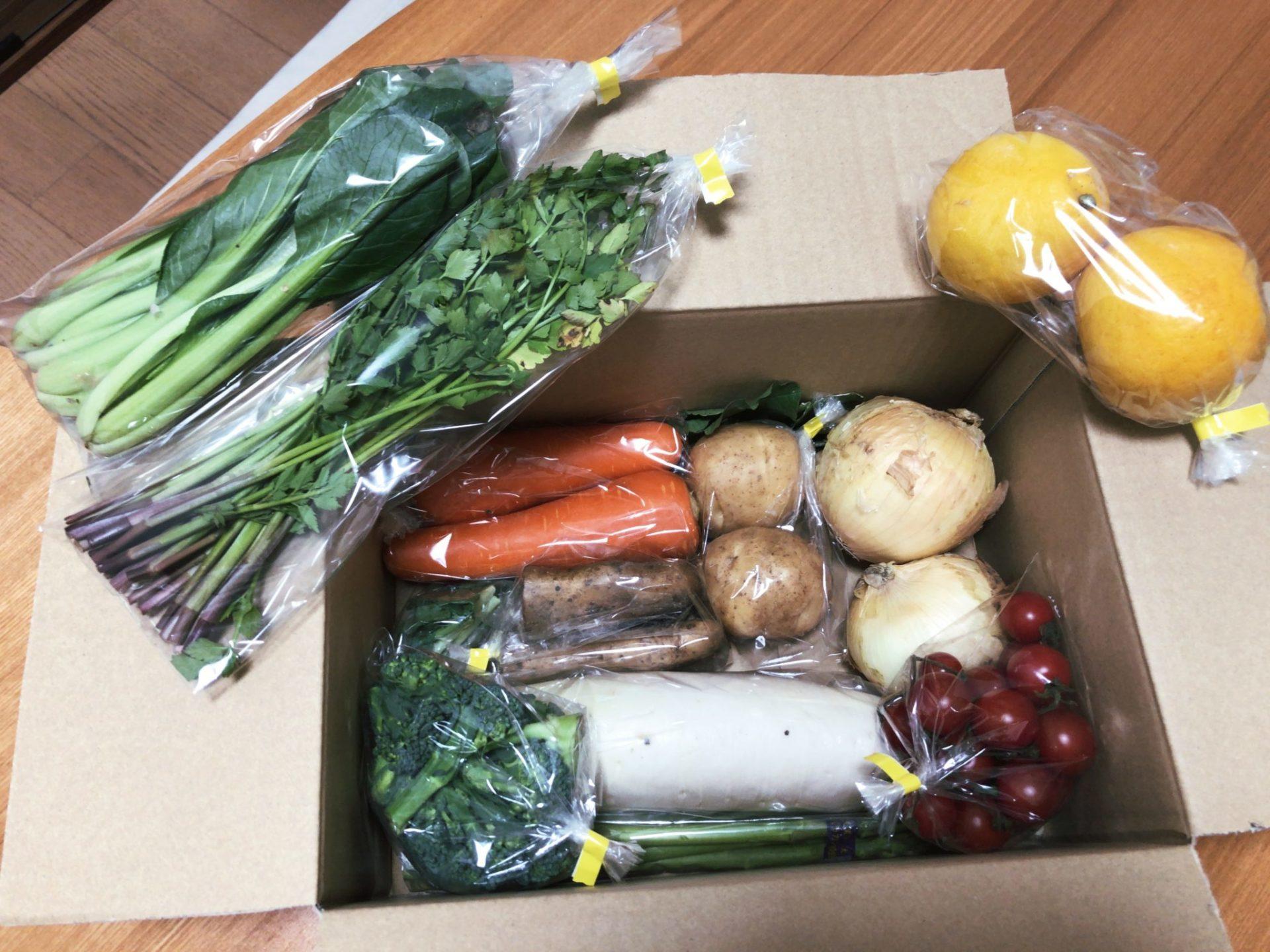 九百屋の宅配野菜に入っている野菜