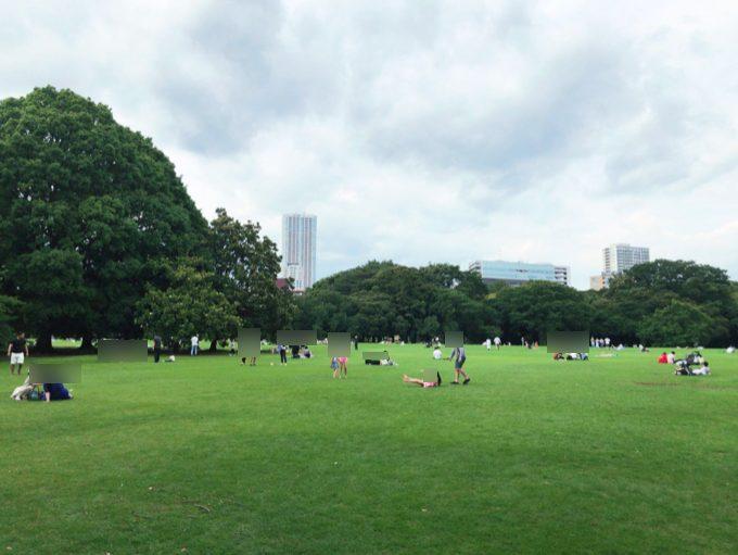 スターバックスコーヒー 新宿御苑店目の前にある芝生広場