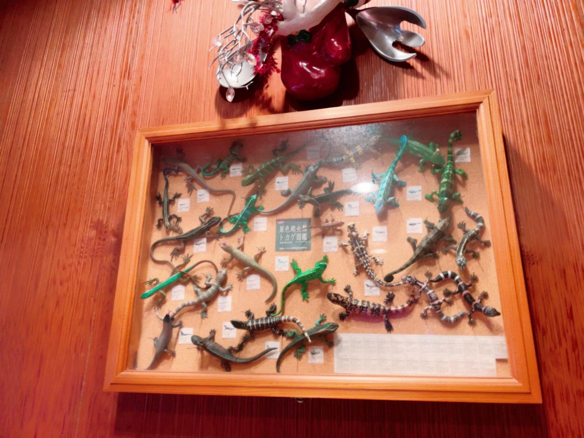 虫の巣EST 下高井戸のトカゲグッズ