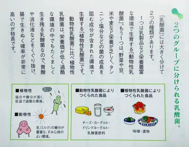 カゴメ植物乳酸菌ラブレのサプリ