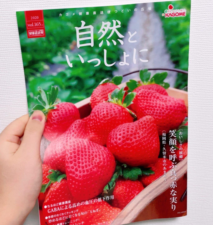 カゴメ植物乳酸菌ラブレのサプリの広報誌